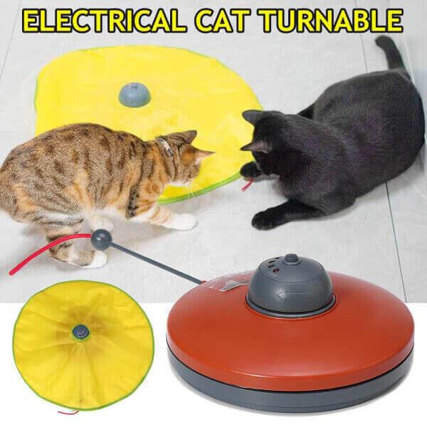 CAT TURNTABLE