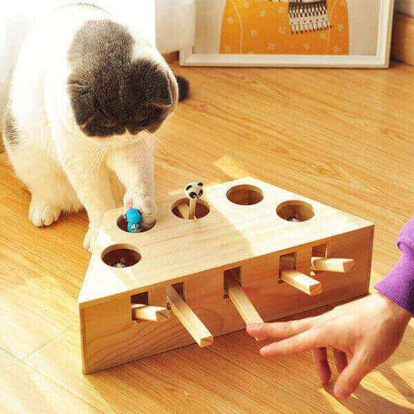 WOOD CATS HUNT INTERACTIVE TOYS