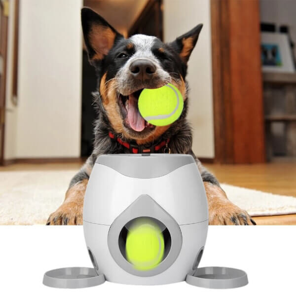 DOG TENNIS BALL LAUNCHER WITH TREAT REWARD