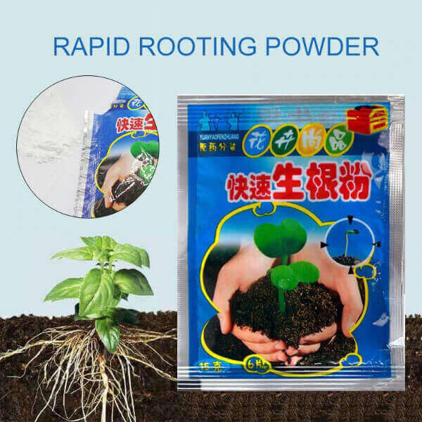 PLANT RAPID GROWING POWDER ( 10 PACKS BUNDLE)