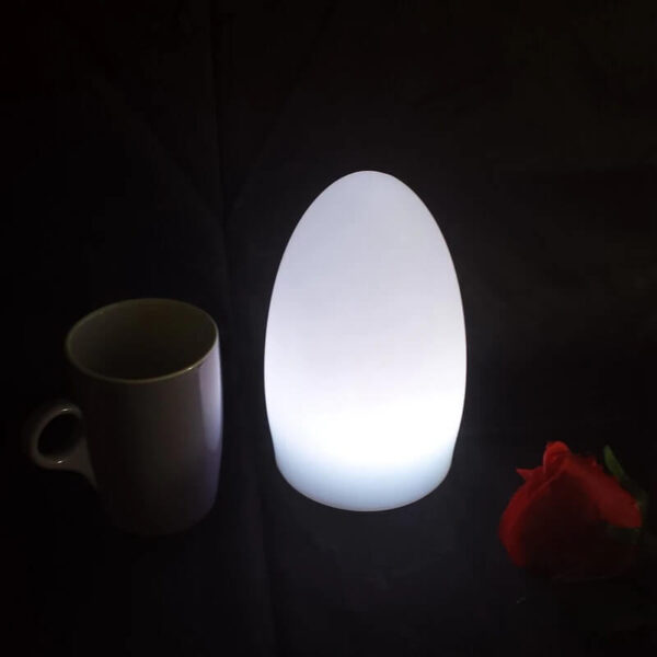 GLOWING IN DARK LED EGG LIGHTS