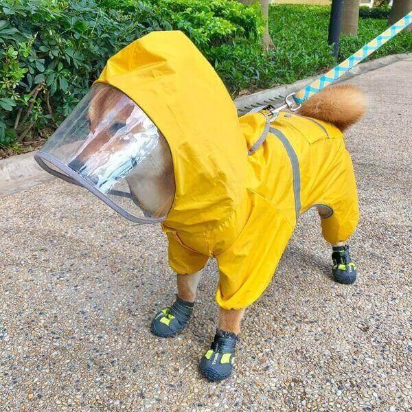 WATERPROOF DOG RAINCOAT