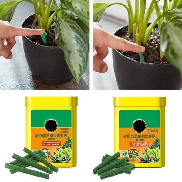 PLANT FERTILIZING SPIKES