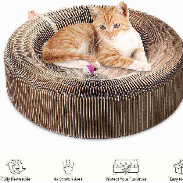 CAT SCRATCHER LOUNGE BED