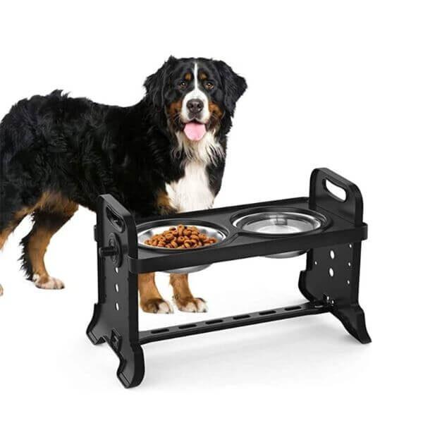 ANTI-SLIP ELEVATED DOUBLE DOG BOWLS