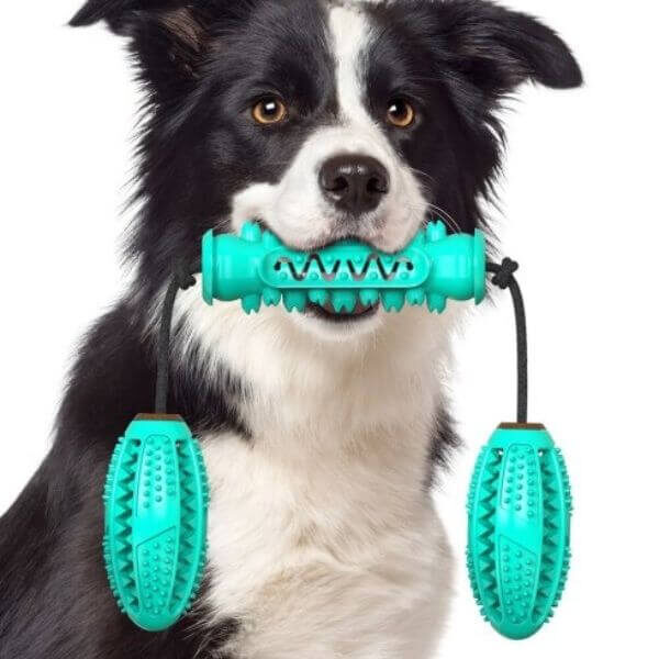 DOG CHEW TOOTHBRUSH RUBBER