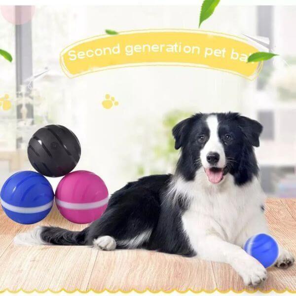 WATERPROOF PET BUSY BALL